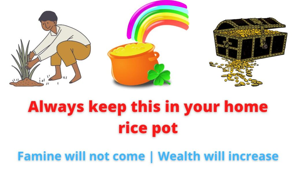 Always keep this in your home rice pot | Famine will not come | Wealth will increase.