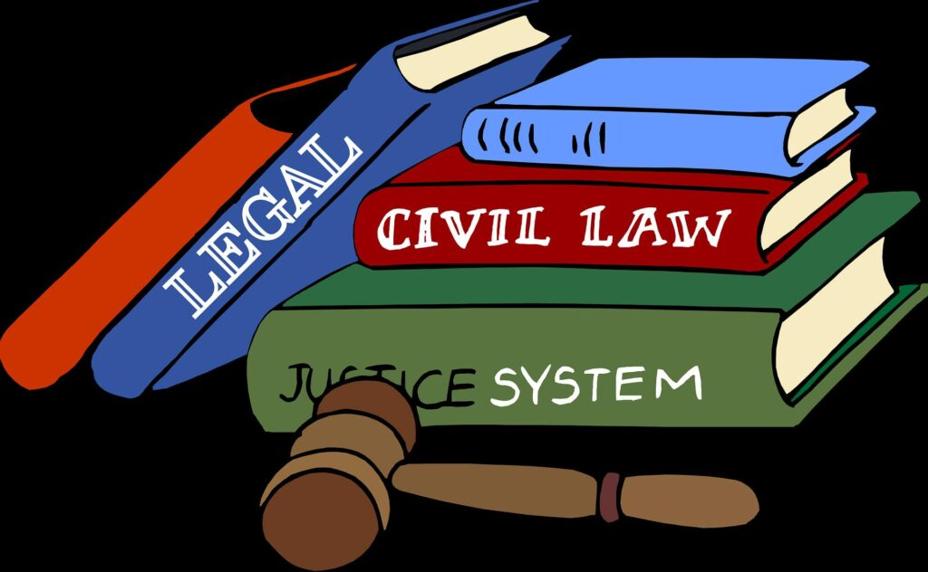 How does the Constitution functioning?.