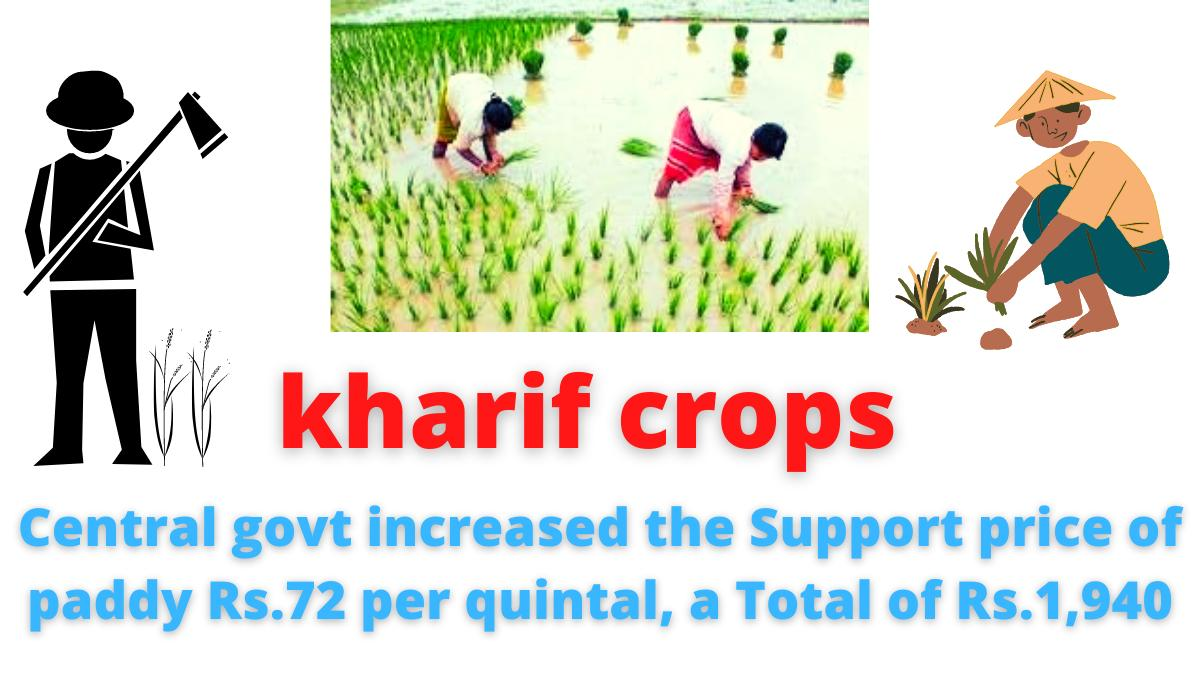 kharif crops | Central govt increased the Support price of paddy Rs.72 per quintal, a Total of Rs.1,940.