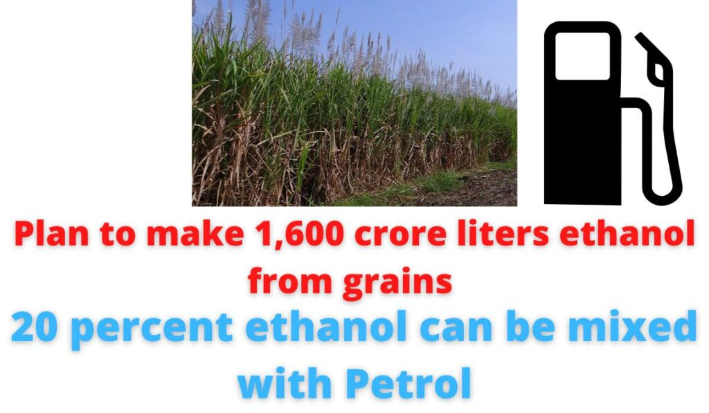 Plan to make 1,600 crore liters ethanol from grains | 20 percent ethanol can be mixed with Petrol.