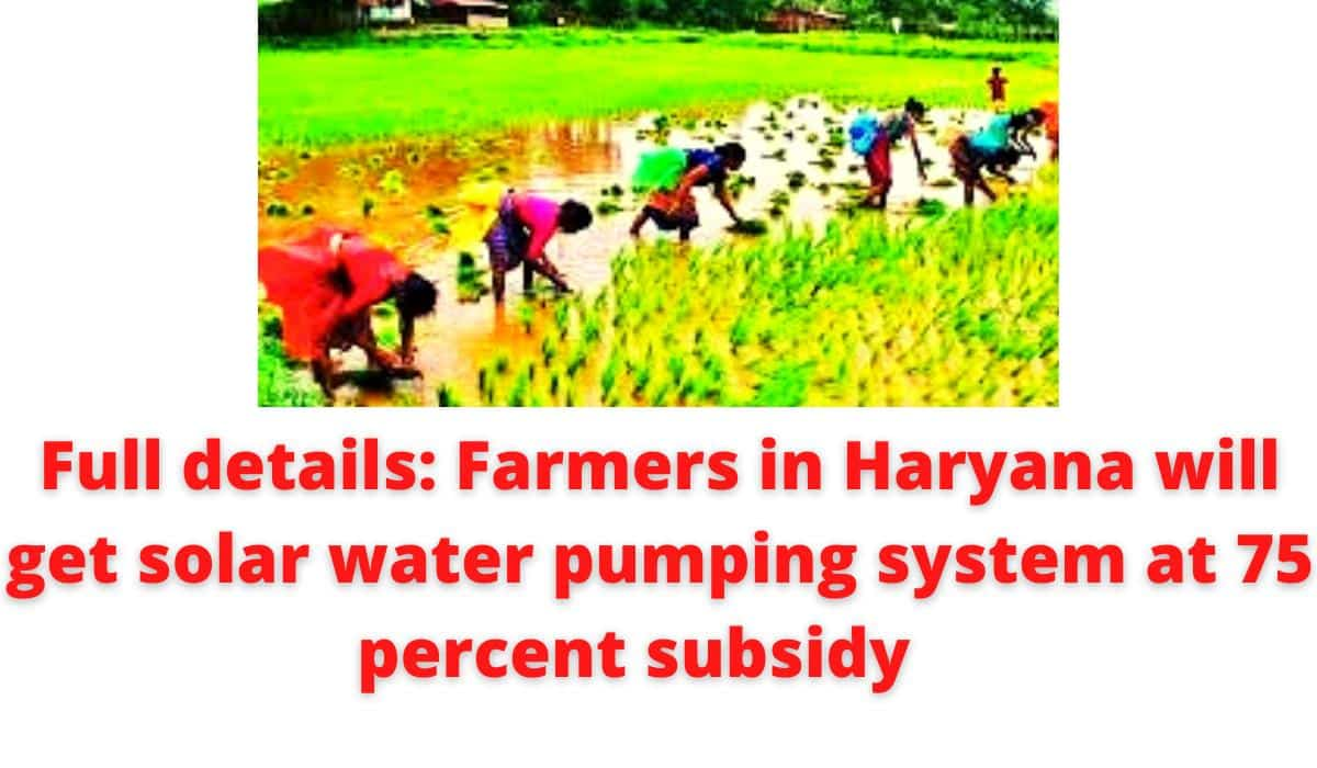 Full details: Farmers in Haryana will get solar water pumping system at 75 percent subsidy.