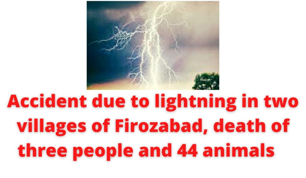 Accident due to lightning in two villages of Firozabad, death of three people and 44 animals.