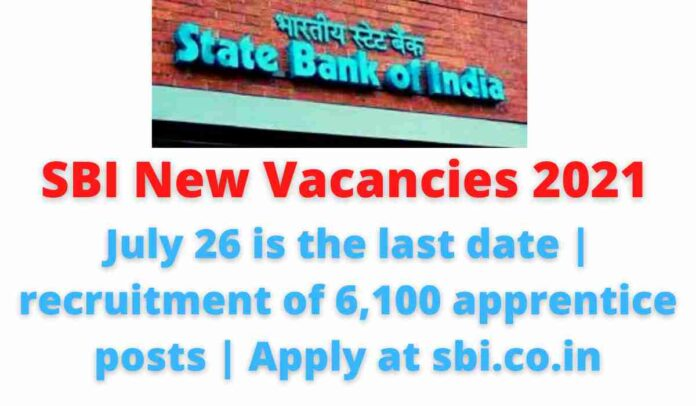 SBI New Vacancies 2021: July 26 is the last date | recruitment of 6,100 apprentice posts | Apply at sbi.co.in.