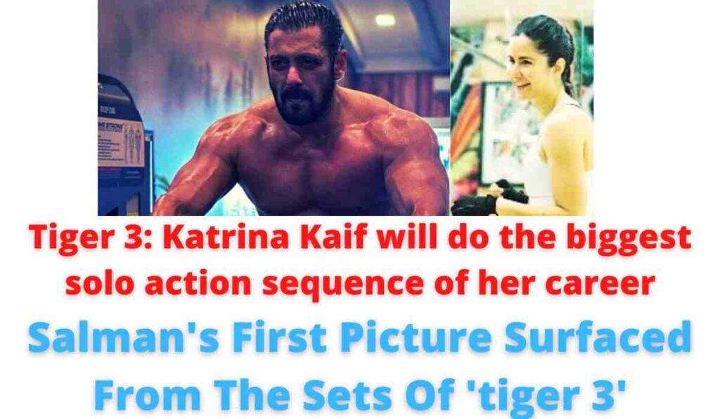 Tiger 3: Katrina Kaif will do the biggest solo action sequence of her career | Salman's First Picture Surfaced From The Sets Of 'tiger 3'.