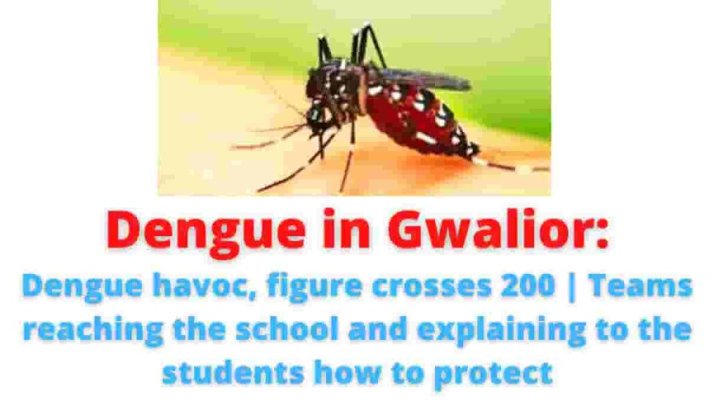 Dengue in Gwalior: Dengue havoc, figure crosses 200 | Teams reaching the school and explaining to the students how to protect.